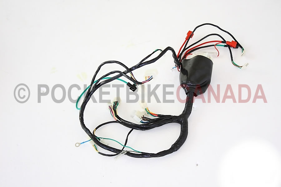 atv parts lambo 150cc atv wire harness 808 pbc290 pocket bike lambo 150cc atv wire harness 808 pbc290